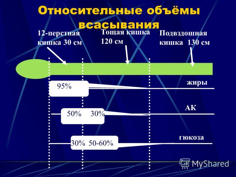 Относительные объёмы всасывания 12-перстная кишка 30 см Тощая кишка 120 см Подвздошная кишка 130 см 95% 50%30% 50-60% жиры АК гюкоза