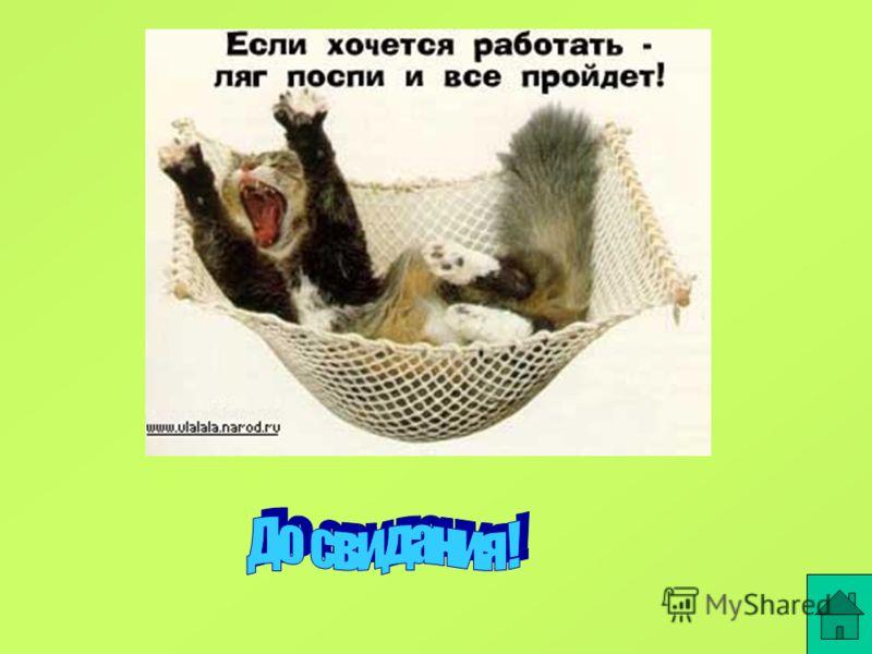 ГАЛЕРЕГАЛЕРЕ Галерея кошек