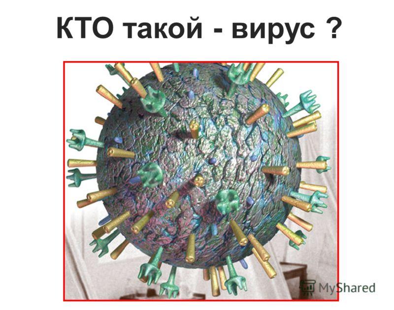 КТО такой - вирус ?