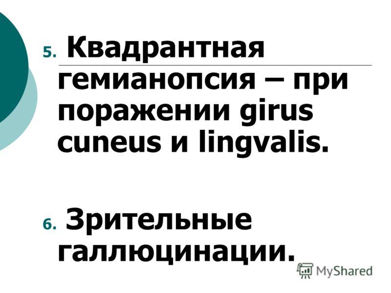 5. Квадрантная гемианопсия – при поражении girus cuneus и lingvalis. 6. Зрительные галлюцинации.