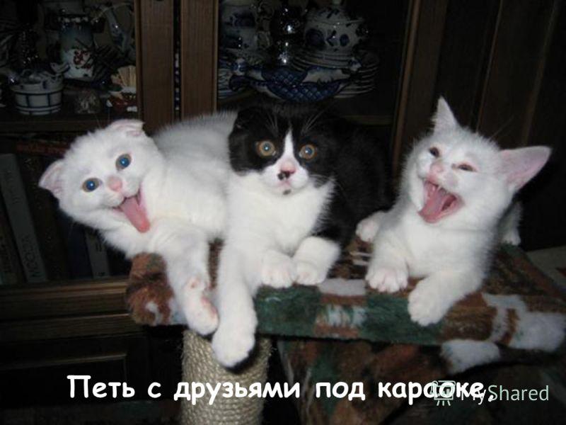 Петь с друзьями под караоке,