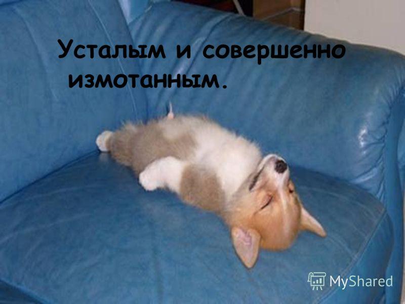 Усталым и совершенно измотанным.