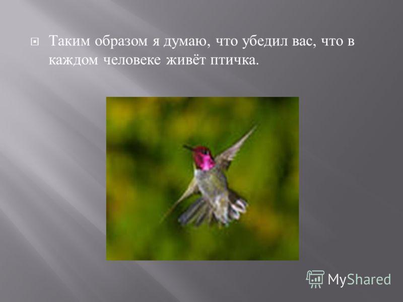 Таким образом я думаю, что убедил вас, что в каждом человеке живёт птичка.