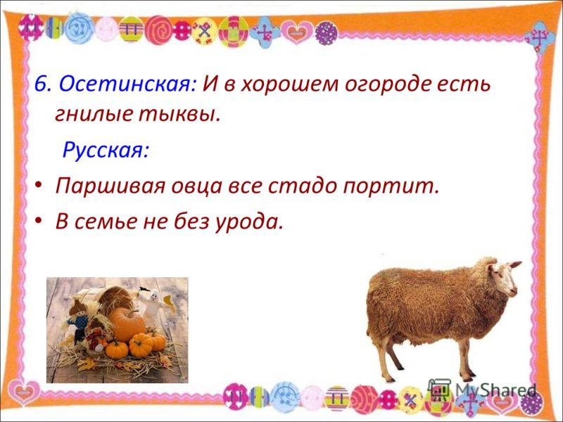 6. Осетинская: И в хорошем огороде есть гнилые тыквы. Русская: Паршивая овца все стадо портит. В семье не без урода.