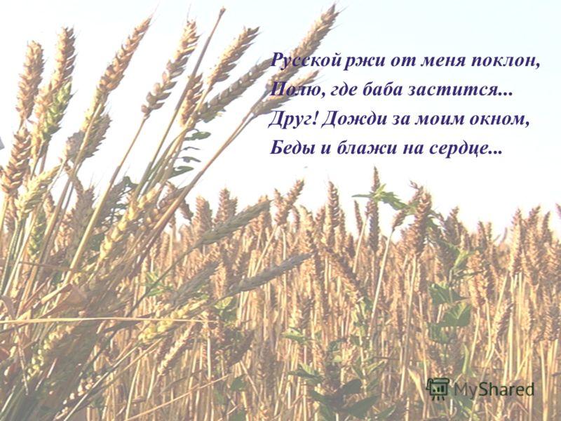 Русской ржи от меня поклон, Полю, где баба застится... Друг ! Дожди за моим окном, Беды и блажи на сердце...