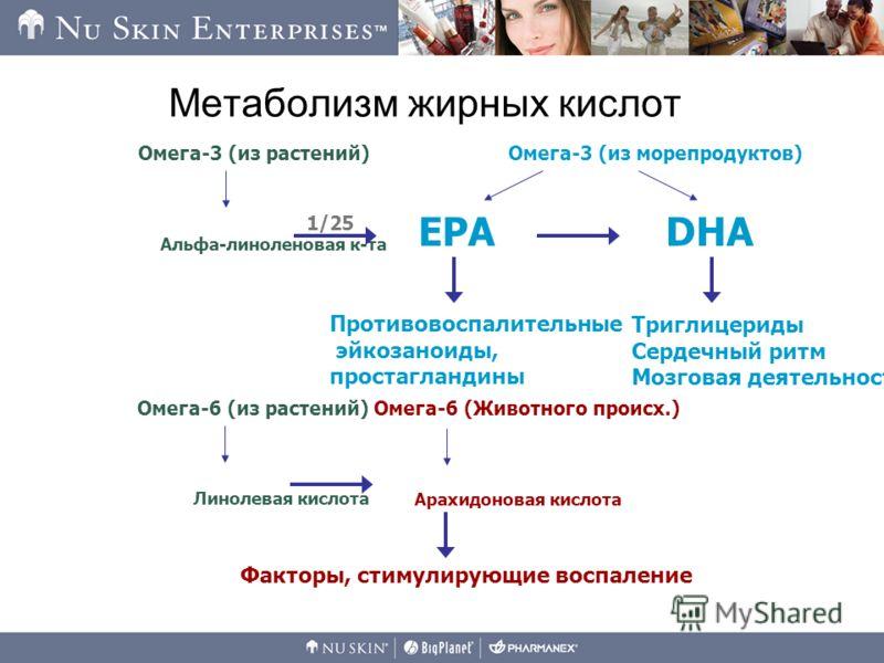 Метаболизм жирных кислот Факторы, стимулирующие воспаление Альфа-линоленовая к-та Омега-3 (из растений) Противовоспалительные эйкозаноиды, простагландины Триглицериды Сердечный ритм Мозговая деятельность Омега-3 (из морепродуктов) EPADHA 1/25 Линолев