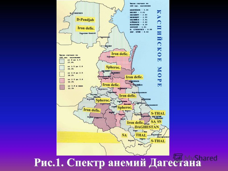 Рис.1. Спектр анемий Дагестана Рис.1. Спектр анемий Дагестана