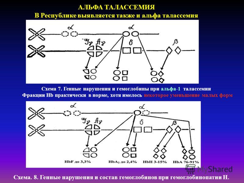 АЛЬФА ТАЛАССЕМИЯ В Республике выявляется также и альфа талассемия Схема 7. Генные нарушения и гемоглобины при альфа-1 талассемии Фракции Hb практически в норме, хотя имелось некоторое уменьшение малых форм Схема. 8. Генные нарушения и состав гемоглоб