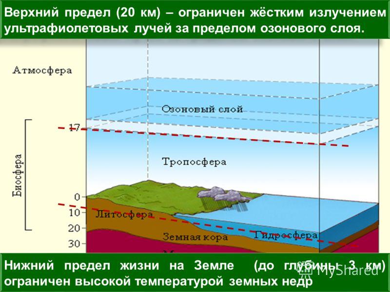 Нижний предел жизни на Земле (до глубины 3 км) ограничен высокой температурой земных недр Верхний предел (20 км) – ограничен жёстким излучением ультрафиолетовых лучей за пределом озонового слоя.