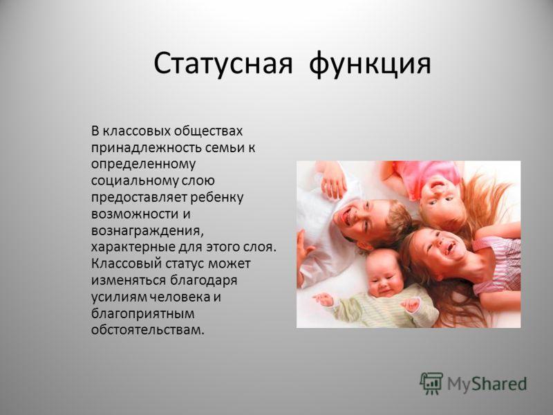 Статусная функция В классовых обществах принадлежность семьи к определенному социальному слою предоставляет ребенку возможности и вознаграждения, характерные для этого слоя. Классовый статус может изменяться благодаря усилиям человека и благоприятным