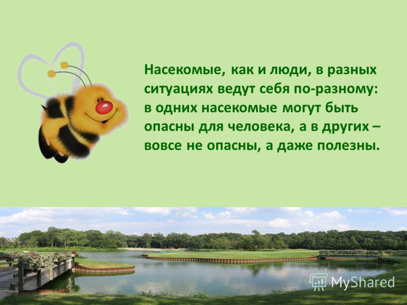 Насекомые, как и люди, в разных ситуациях ведут себя по-разному: в одних насекомые могут быть опасны для человека, а в других – вовсе не опасны, а даже полезны.