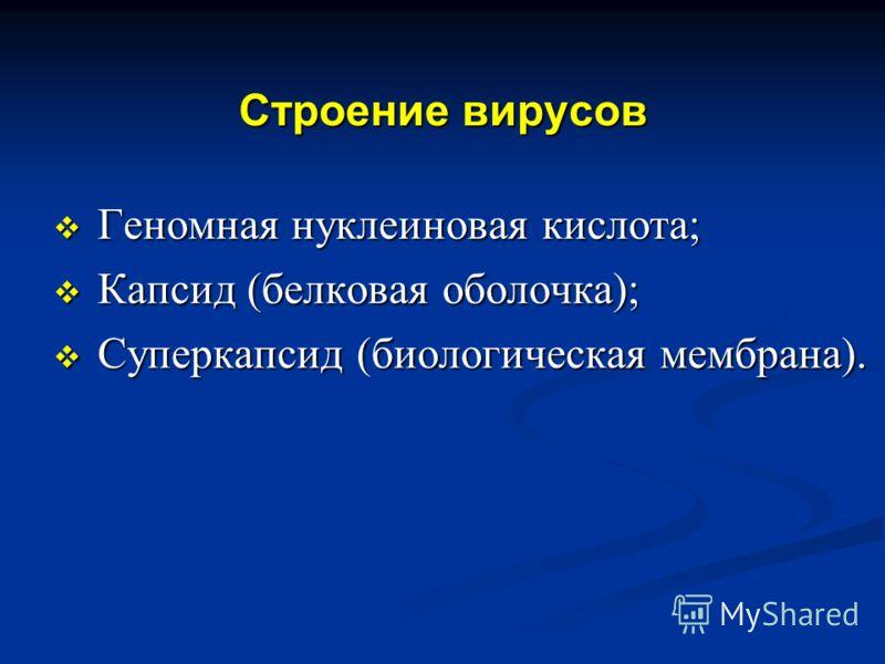 Строение вирусов Геномная нуклеиновая кислота; Геномная нуклеиновая кислота; Капсид (белковая оболочка); Капсид (белковая оболочка); Суперкапсид (биологическая мембрана). Суперкапсид (биологическая мембрана).