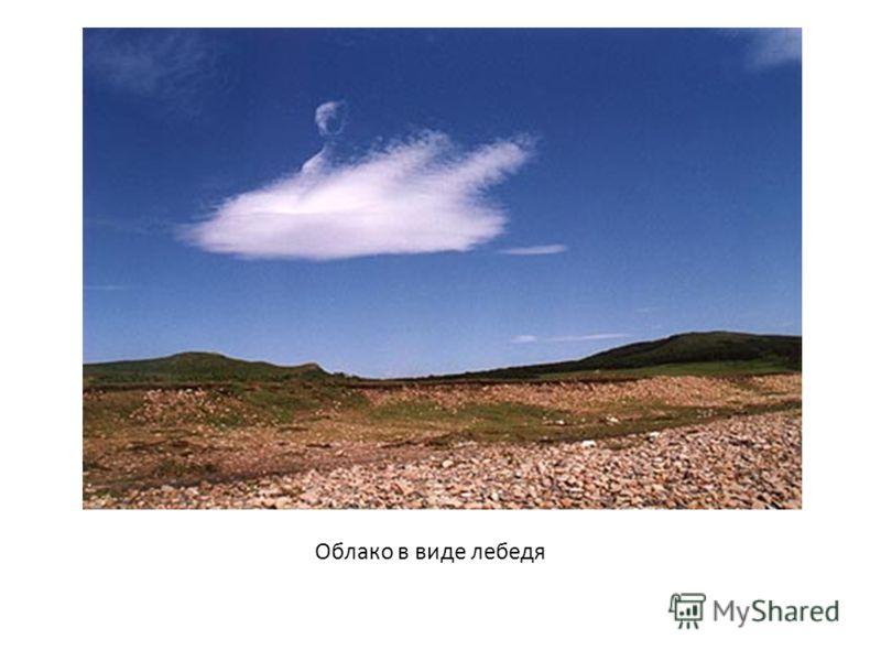 Облако в виде лебедя