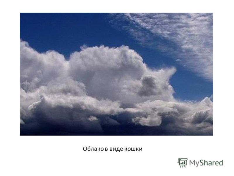 москва лови пушистые облака