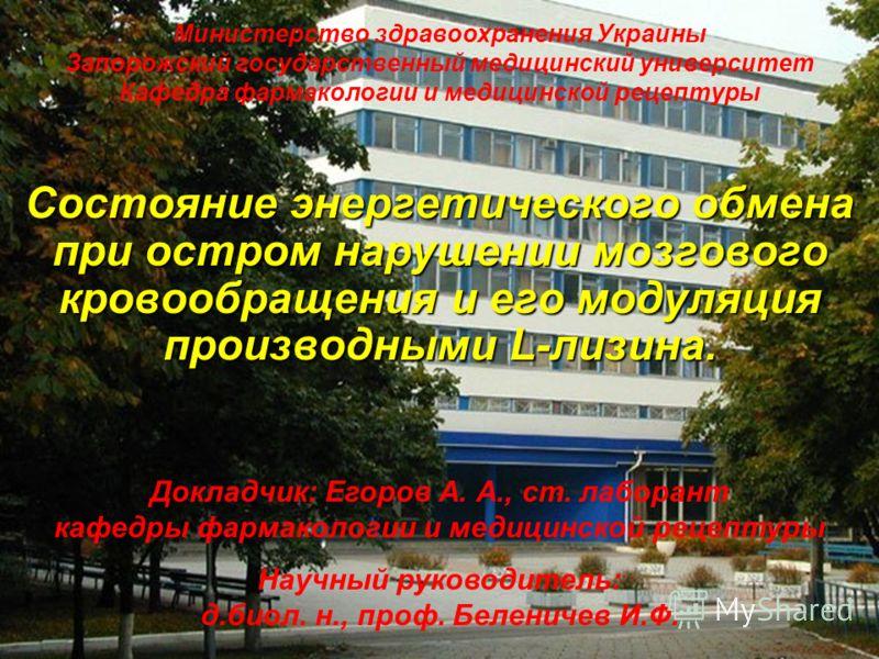 Министерство здравоохранения Украины Запорожский государственный медицинский университет Кафедра фармакологии и медицинской рецептуры Состояние энергетического обмена при остром нарушении мозгового кровообращения и его модуляция производными L-лизина