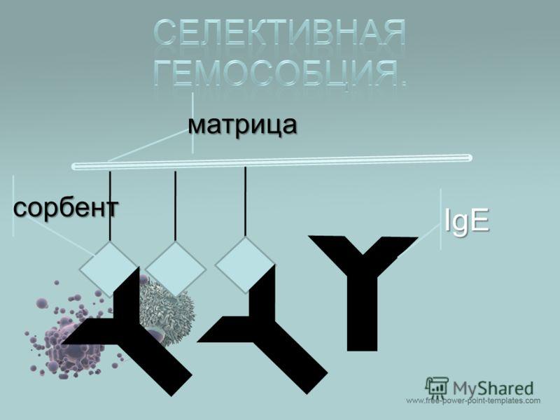 IgE матрица сорбент