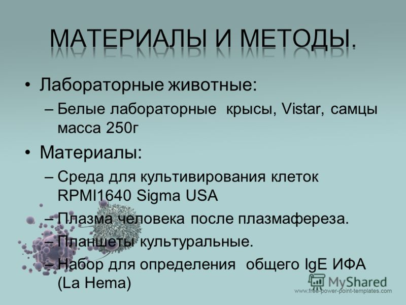 Лабораторные животные: –Белые лабораторные крысы, Vistar, самцы масса 250г Материалы: –Среда для культивирования клеток RPMI1640 Sigma USA –Плазма человека после плазмафереза. –Планшеты культуральные. –Набор для определения общего IgE ИФА (La Hema)