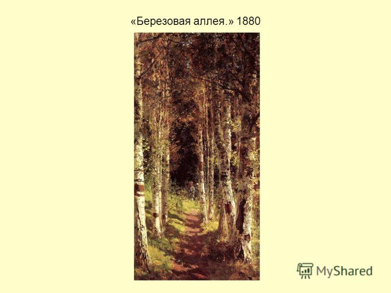 «Березовая аллея.» 1880