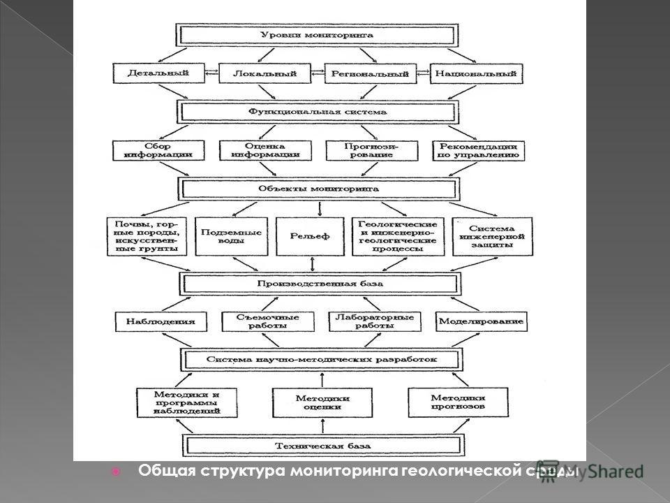 Общая структура мониторинга геологической среды