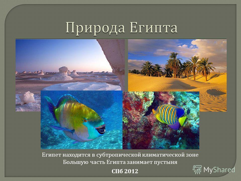 Египет находится в субтропической климатической зоне Большую часть Египта занимает пустыня