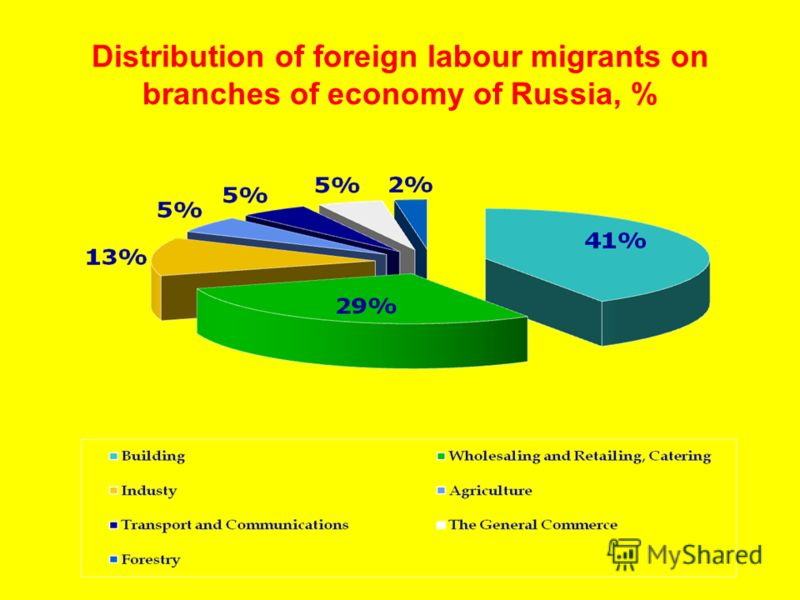 Distribution of foreign labour migrants on branches of economy of Russia, %