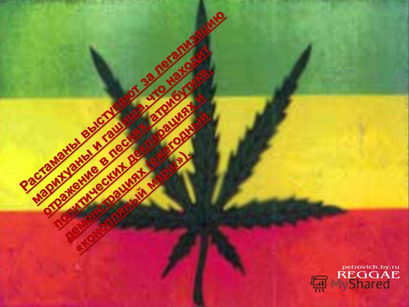 Растаманы выступают за легализацию марихуаны и гашиша, что находит отражение в песнях, атрибутике, политических декларациях и демонстрациях (ежегодный «конопляный марш»).