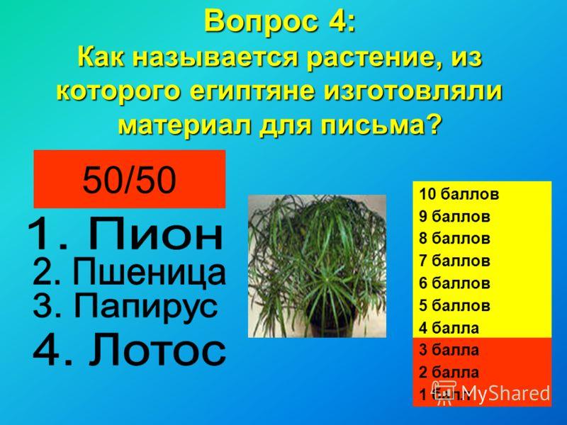 Вопрос 4: Как называется растение, из которого египтяне изготовляли материал для письма? 50/50 10 баллов 9 баллов 8 баллов 7 баллов 6 баллов 5 баллов 4 балла 3 балла 2 балла 1 балл