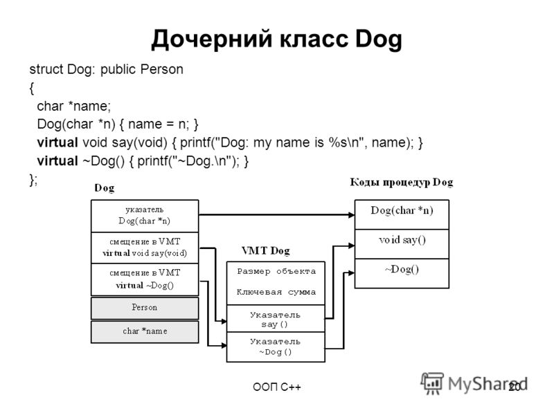 ООП C++20 Дочерний класс Dog struct Dog: public Person { char *name; Dog(char *n) { name = n; } virtual void say(void) { printf(Dog: my name is %s\n, name); } virtual ~Dog() { printf(~Dog.\n); } };