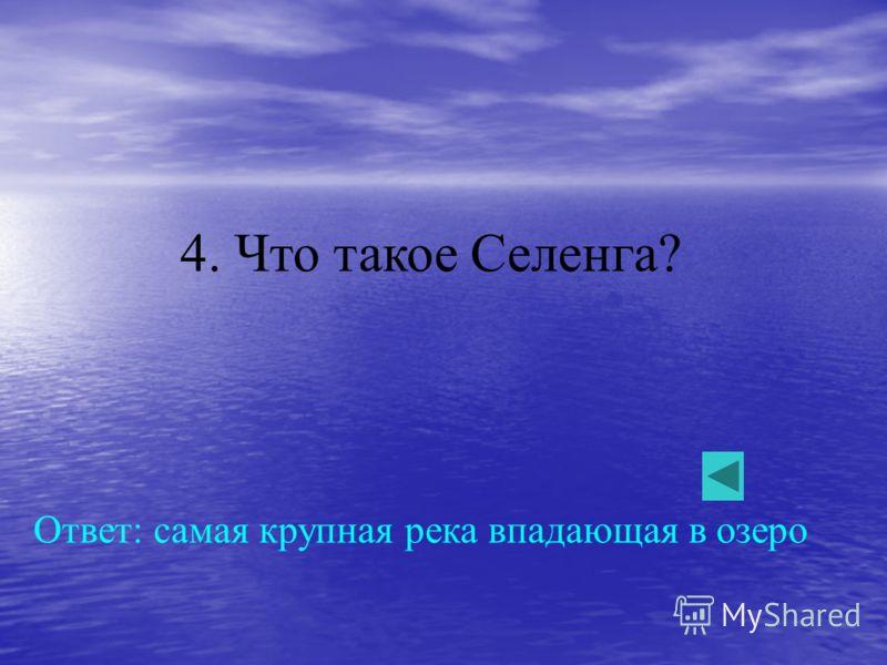 4. Что такое Селенга? Ответ: самая крупная река впадающая в озеро