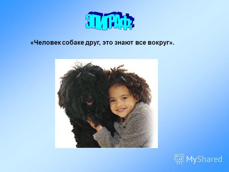 «Человек собаке друг, это знают все вокруг».