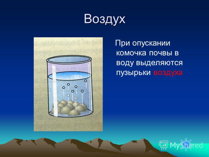 Воздух При опускании комочка почвы в воду выделяются пузырьки воздуха