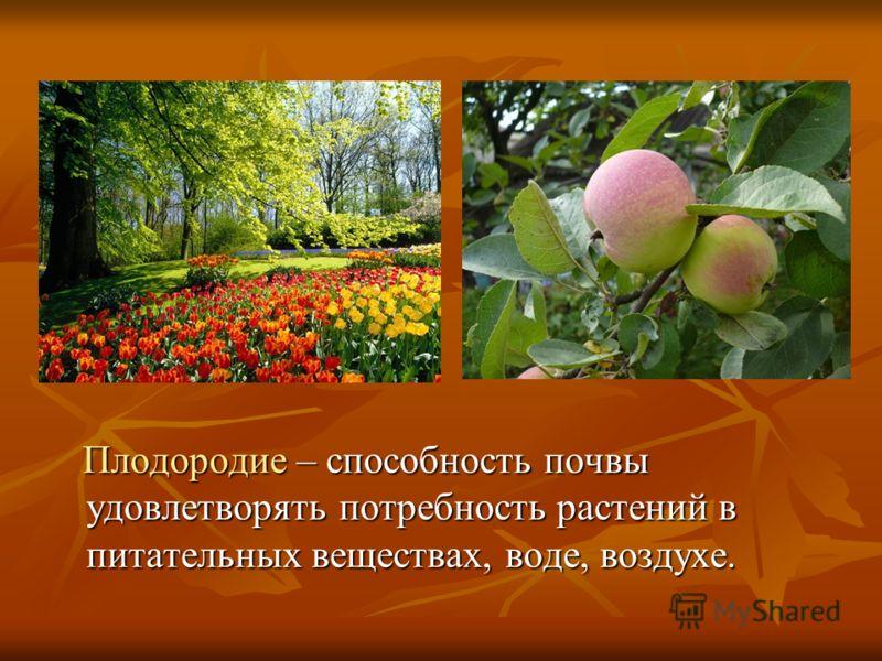 Плодородие – способность почвы удовлетворять потребность растений в питательных веществах, воде, воздухе. Плодородие – способность почвы удовлетворять потребность растений в питательных веществах, воде, воздухе.