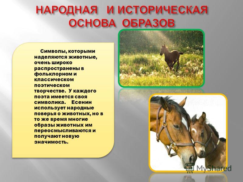 Символы, которыми наделяются животные, очень широко распространены в фольклорном и классическом поэтическом творчестве. У каждого поэта имеется своя символика. Есенин использует народные поверья о животных, но в то же время многие образы животных им