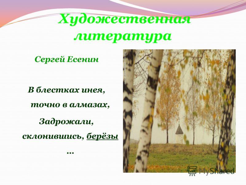 Художественная литература Сергей Есенин В блестках инея, точно в алмазах, Задрожали, склонившись, берёзы …