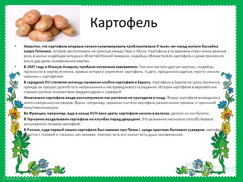 FokinaLida.75@mail.ru Картофель Известно, что картофель впервые начали культивировать приблизительно 5 тысяч лет назад жители бассейна озера Титикака, которое расположено на границе между Перу и Мили. Картофель в те времена играл очень важную роль в