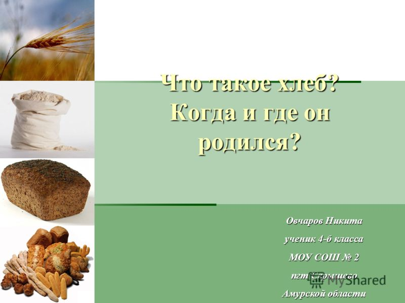 Что такое хлеб? Когда и где он родился? Овчаров Никита ученик 4-б класса МОУ СОШ 2 пгт Серышево Амурской области