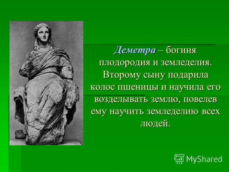 Деметра – богиня плодородия и земледелия. Второму сыну подарила колос пшеницы и научила его возделывать землю, повелев ему научить земледелию всех людей.