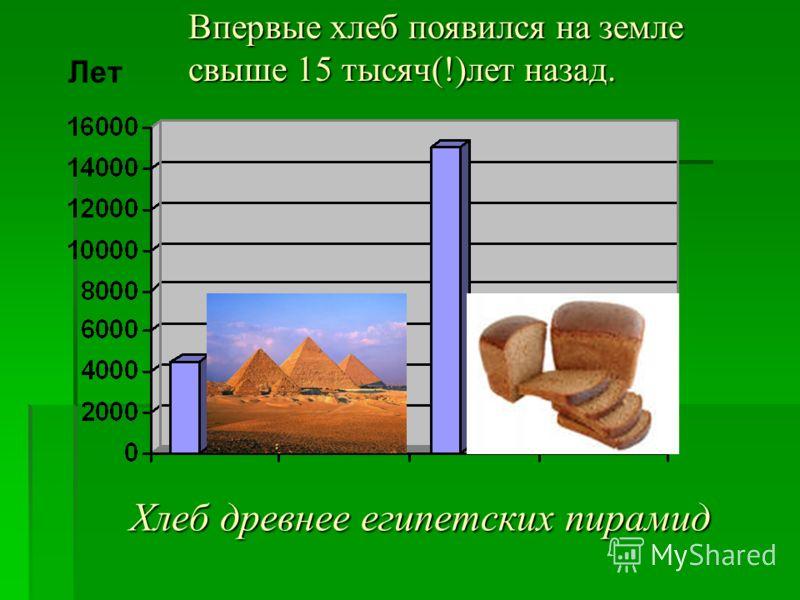 Хлеб древнее египетских пирамид Лет Впервые хлеб появился на земле свыше 15 тысяч(!)лет назад.
