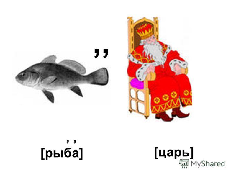 ,,, [рыба] [царь]