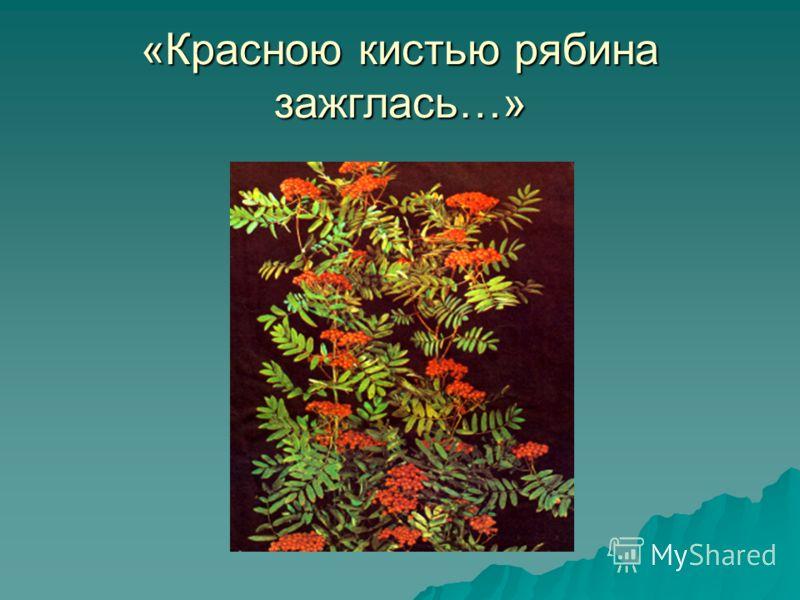 «Красною кистью рябина зажглась…»
