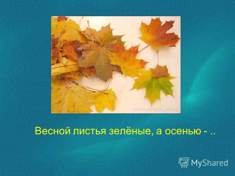 Весной листья зелёные, а осенью -..