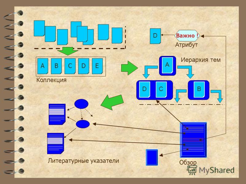 Литературные указатели EDCBA Коллекция Обзор D A CB Иерархия тем D Важно ! Атрибут
