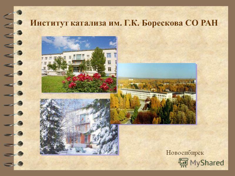 Институт катализа им. Г.К. Борескова СО РАН Creativity Session Новосибирск