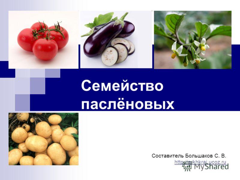 растения семейства пасленовых