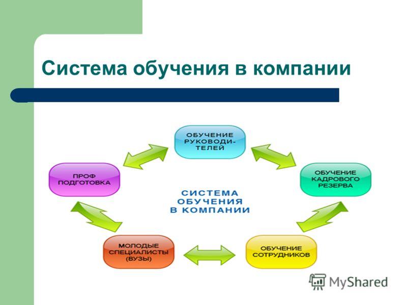 Система обучения в компании