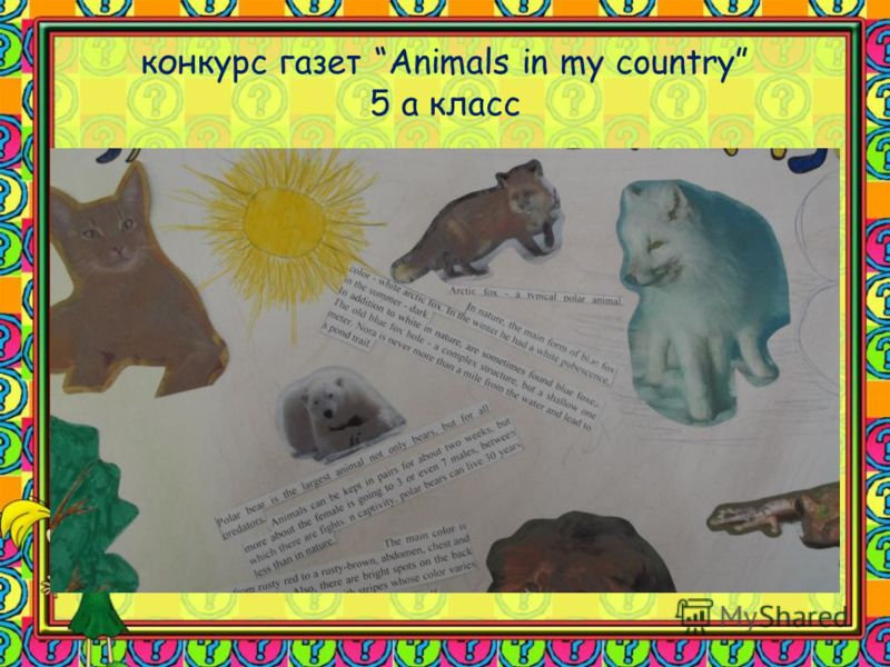 конкурс газет Animals in my country 5 а класс