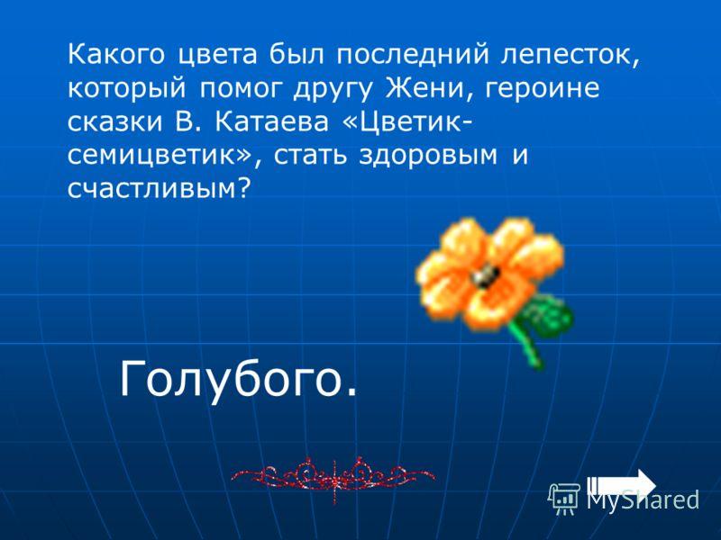 Какого цвета был последний лепесток, который помог другу Жени, героине сказки В. Катаева «Цветик- семицветик», стать здоровым и счастливым? Голубого.