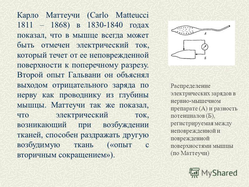Карло Маттеучи (Carlo Matteucci 1811 – 1868) в 1830-1840 годах показал, что в мышце всегда может быть отмечен электрический ток, который течет от ее неповрежденной поверхности к поперечному разрезу. Второй опыт Гальвани он объяснял выходом отрицатель