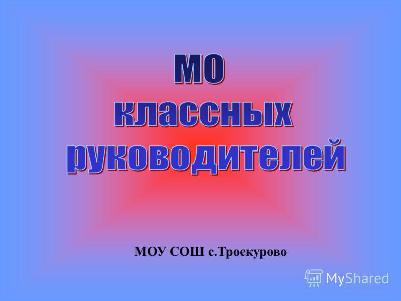 МОУ СОШ с.Троекурово