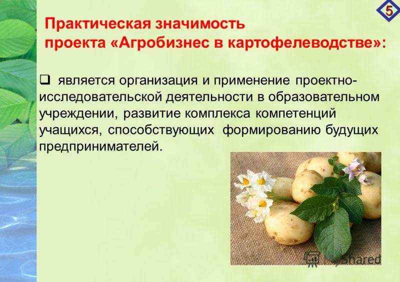 Практическая значимость проекта «Агробизнес в картофелеводстве»: является организация и применение проектно- исследовательской деятельности в образовательном учреждении, развитие комплекса компетенций учащихся, способствующих формированию будущих пре